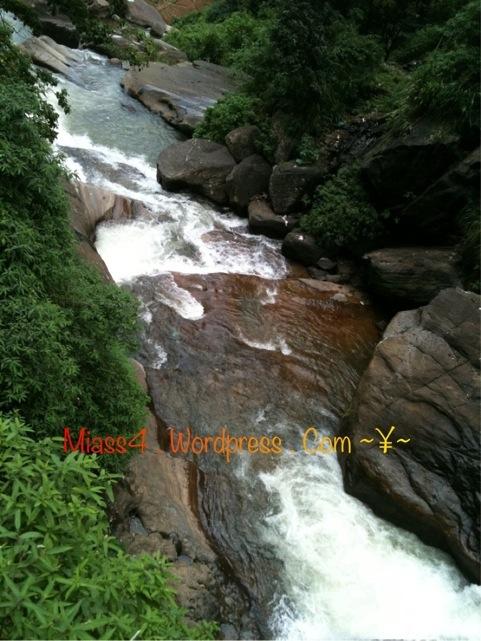 20110811-101805.jpg